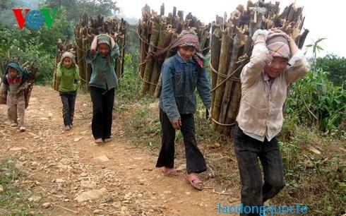 Khó khăn về kinh tế nên trẻ em tham gia lao động