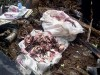 Tìm thấy các bao tiền tại hiện trường vụ rơi máy bay Indonesia