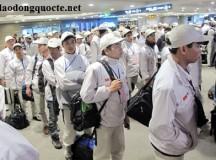 Thông báo tuyển gấp xuất khẩu lao động Nhật Bản