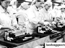 Thu hồi giấy phép 2 công ty xuất khẩu lao động