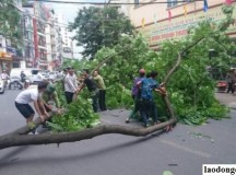 Hàng loạt sự cố giao thông xảy ra trong cơn mưa dông ở Hà Nội