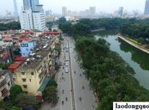 Hà Nội cân nhắc thay thế hơn 4.000 cây xà cừ trong nội thành
