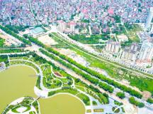 Hà Nội chặt hạ, đánh chuyển hơn 1.000 cây cổ thụ đoạn Mai Dịch – cầu Thăng Long